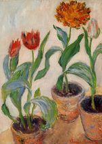 Клод Моне Три горшка с тюльпанами 1883г 50x37cm
