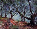 Клод Моне Группа оливковых деревьев в Бордигере 1884г 65x81cm