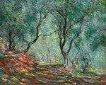 Клод МонеОливковая роща в саду Морено 1884г 65x81cm.