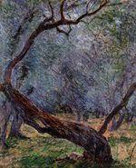 Клод Моне Оливы (этюд) 1884г 73x60cm