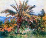 Клод Моне Пальма в Бордигере 1884г 74х61