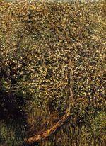 Клод Моне Яблони в цвету у воды 1880г